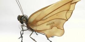 edouard Matinet's butterfly sculpture