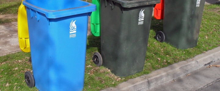 Bolton council reduce the size of bins